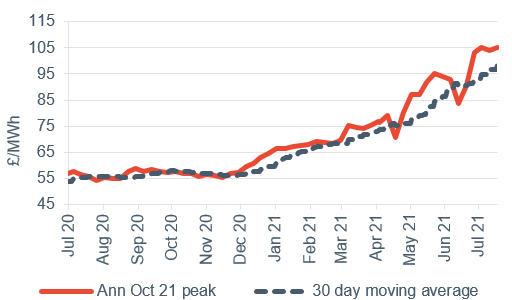 Peak electricity Annual October contract 23 July 2021