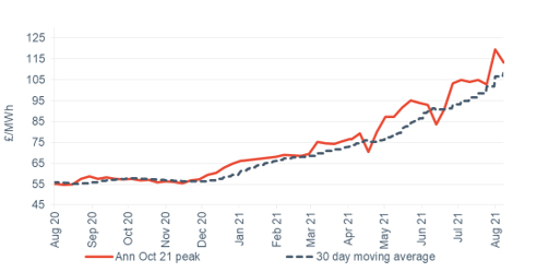 Peak electricity Annual October contract 13 August 2021